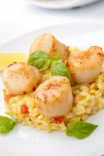Super sund gourmet ret – Fiskerisotte